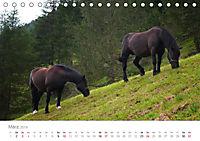 Tiere in Freiheit - Nutztiere auf der Alm (Tischkalender 2019 DIN A5 quer) - Produktdetailbild 3