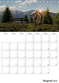 Tiere in Freiheit - Nutztiere auf der Alm (Tischkalender 2019 DIN A5 hoch) - Produktdetailbild 8