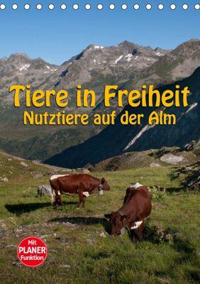 Tiere in Freiheit - Nutztiere auf der Alm (Tischkalender 2019 DIN A5 hoch), Georg Niederkofler