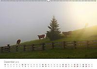 Tiere in Freiheit - Nutztiere auf der Alm (Wandkalender 2019 DIN A2 quer) - Produktdetailbild 12
