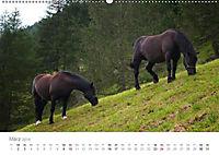 Tiere in Freiheit - Nutztiere auf der Alm (Wandkalender 2019 DIN A2 quer) - Produktdetailbild 3