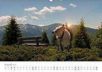 Tiere in Freiheit - Nutztiere auf der Alm (Wandkalender 2019 DIN A2 quer) - Produktdetailbild 8
