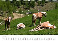 Tiere in Freiheit - Nutztiere auf der Alm (Wandkalender 2019 DIN A2 quer) - Produktdetailbild 7