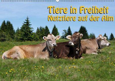 Tiere in Freiheit - Nutztiere auf der Alm (Wandkalender 2019 DIN A2 quer), Georg Niederkofler