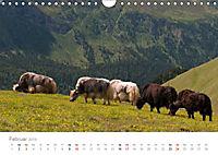 Tiere in Freiheit - Nutztiere auf der Alm (Wandkalender 2019 DIN A4 quer) - Produktdetailbild 2