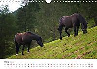 Tiere in Freiheit - Nutztiere auf der Alm (Wandkalender 2019 DIN A4 quer) - Produktdetailbild 3