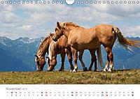 Tiere in Freiheit - Nutztiere auf der Alm (Wandkalender 2019 DIN A4 quer) - Produktdetailbild 11