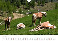 Tiere in Freiheit - Nutztiere auf der Alm (Wandkalender 2019 DIN A4 quer) - Produktdetailbild 7