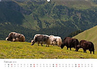 Tiere in Freiheit - Nutztiere auf der Alm (Wandkalender 2019 DIN A2 quer) - Produktdetailbild 2