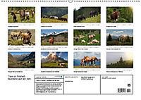 Tiere in Freiheit - Nutztiere auf der Alm (Wandkalender 2019 DIN A2 quer) - Produktdetailbild 13
