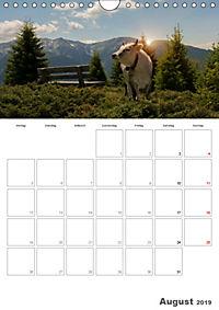 Tiere in Freiheit - Nutztiere auf der Alm (Wandkalender 2019 DIN A4 hoch) - Produktdetailbild 8