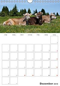 Tiere in Freiheit - Nutztiere auf der Alm (Wandkalender 2019 DIN A4 hoch) - Produktdetailbild 12