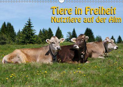 Tiere in Freiheit - Nutztiere auf der Alm (Wandkalender 2019 DIN A3 quer), Georg Niederkofler