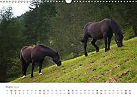 Tiere in Freiheit - Nutztiere auf der Alm (Wandkalender 2019 DIN A3 quer) - Produktdetailbild 3