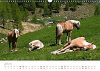 Tiere in Freiheit - Nutztiere auf der Alm (Wandkalender 2019 DIN A3 quer) - Produktdetailbild 7