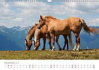 Tiere in Freiheit - Nutztiere auf der Alm (Wandkalender 2019 DIN A3 quer) - Produktdetailbild 11