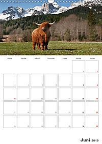 Tiere in Freiheit - Nutztiere auf der Alm (Wandkalender 2019 DIN A3 hoch) - Produktdetailbild 6