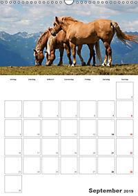 Tiere in Freiheit - Nutztiere auf der Alm (Wandkalender 2019 DIN A3 hoch) - Produktdetailbild 9