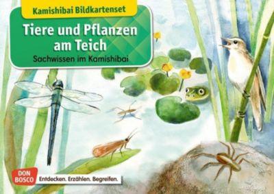 Tiere und Pflanzen am Teich. Kamishibai Bildkartenset. - Katharina Stöckl  