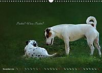 Tierisch nachgefragt (Wandkalender 2019 DIN A3 quer) - Produktdetailbild 11