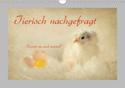 Tierisch nachgefragt (Wandkalender 2019 DIN A4 quer), Heike Hultsch