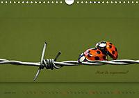 Tierisch nachgefragt (Wandkalender 2019 DIN A4 quer) - Produktdetailbild 1