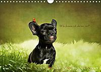 Tierisch nachgefragt (Wandkalender 2019 DIN A4 quer) - Produktdetailbild 7