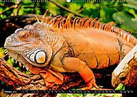 Tierische Momentaufnahmen (Wandkalender 2019 DIN A2 quer) - Produktdetailbild 10