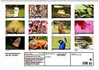 Tierische Momentaufnahmen (Wandkalender 2019 DIN A2 quer) - Produktdetailbild 13