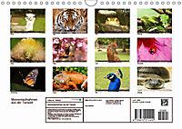 Tierische Momentaufnahmen (Wandkalender 2019 DIN A4 quer) - Produktdetailbild 13