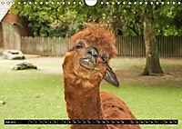 Tierische Momentaufnahmen (Wandkalender 2019 DIN A4 quer) - Produktdetailbild 7