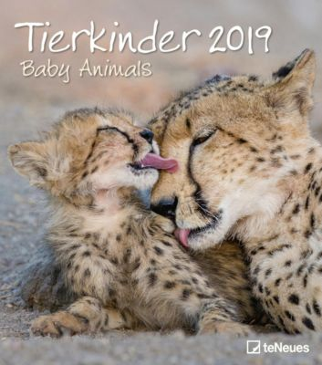 Tierkinder 2019
