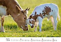 Tierkinder auf dem Bauernhof 2019 - Produktdetailbild 4
