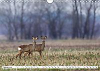 Tiermomente (Wandkalender 2019 DIN A4 quer) - Produktdetailbild 2