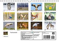 Tiermomente (Wandkalender 2019 DIN A4 quer) - Produktdetailbild 13