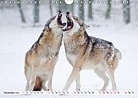 Tiermomente (Wandkalender 2019 DIN A4 quer) - Produktdetailbild 12