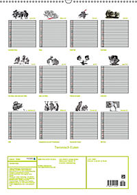 Tieronisch Eulen (Wandkalender 2019 DIN A2 hoch) - Produktdetailbild 13