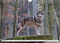 Tierwelt in den Canadian Rockies (Wandkalender 2019 DIN A4 quer) - Produktdetailbild 10