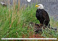 Tierwelt in den Canadian Rockies (Wandkalender 2019 DIN A4 quer) - Produktdetailbild 12