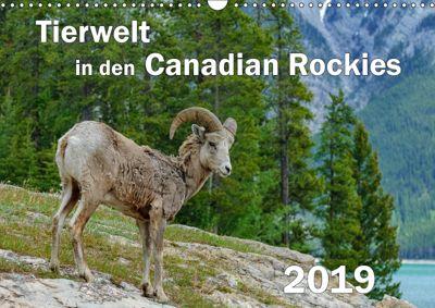 Tierwelt in den Canadian Rockies (Wandkalender 2019 DIN A3 quer), Dieter-M. Wilczek