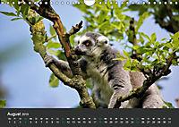 Tierwelten Extrem - Spektakuläre Tierfotos (Wandkalender 2019 DIN A4 quer) - Produktdetailbild 8
