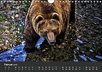 Tierwelten Extrem - Spektakuläre Tierfotos (Wandkalender 2019 DIN A4 quer) - Produktdetailbild 2
