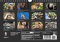 Tierwelten Extrem - Spektakuläre Tierfotos (Wandkalender 2019 DIN A4 quer) - Produktdetailbild 13