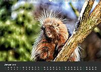 Tierwelten Extrem - Spektakuläre Tierfotos (Wandkalender 2019 DIN A2 quer) - Produktdetailbild 1