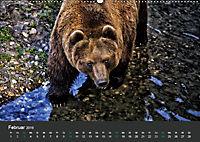 Tierwelten Extrem - Spektakuläre Tierfotos (Wandkalender 2019 DIN A2 quer) - Produktdetailbild 2