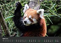 Tierwelten Extrem - Spektakuläre Tierfotos (Wandkalender 2019 DIN A2 quer) - Produktdetailbild 4