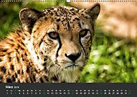 Tierwelten Extrem - Spektakuläre Tierfotos (Wandkalender 2019 DIN A2 quer) - Produktdetailbild 3