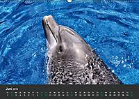Tierwelten Extrem - Spektakuläre Tierfotos (Wandkalender 2019 DIN A2 quer) - Produktdetailbild 6