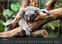 Tierwelten Extrem - Spektakuläre Tierfotos (Wandkalender 2019 DIN A2 quer) - Produktdetailbild 7