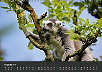 Tierwelten Extrem - Spektakuläre Tierfotos (Wandkalender 2019 DIN A2 quer) - Produktdetailbild 8